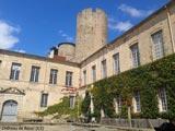 Château de Ravel - Ravel