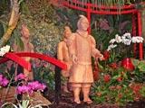 Festival des Orchidées