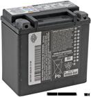 XL 1200V - OEM Battery 65958-04A