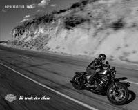 Harley-Davison Gamme 2016