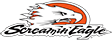 Logo Screamin'Eagle